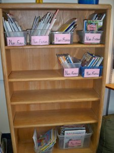 Start of the new nonfiction library shelves in 4th grade as books are sorted with students